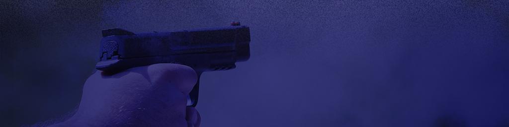 Online Training | GunLearn com | Firearm Training